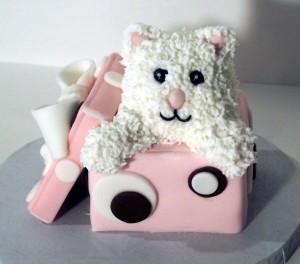 Kitten in Box Cake